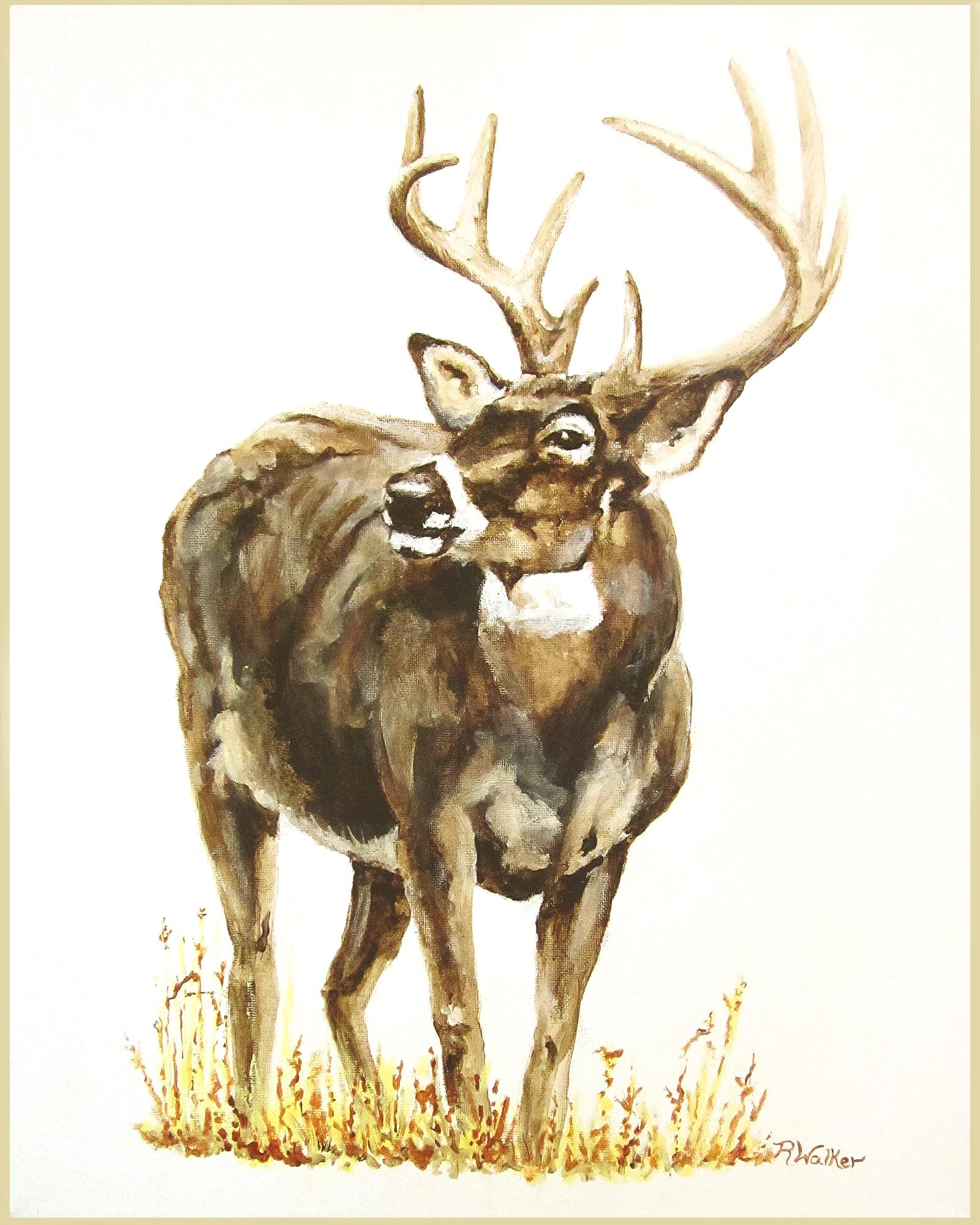 Deer 16X20 Final
